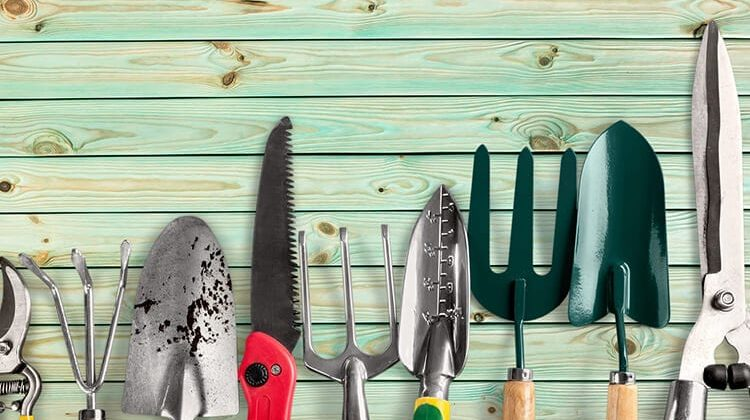 The 7 Best Gifts For Gardeners