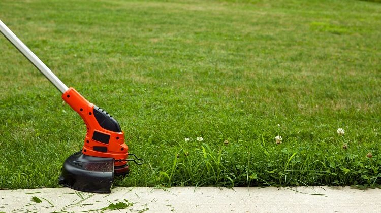 The 7 Best Grass Cutters For Small Gardens